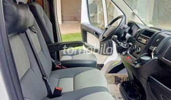 Fiat Ducato  2016 Diesel 130000Km Sala Al-Jadida #97385 full